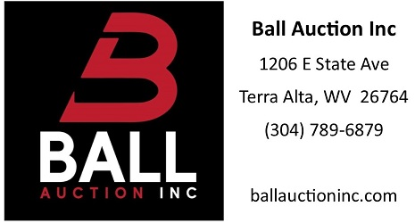 Ball Auction