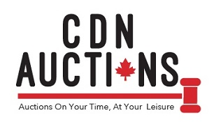 CDN Auctions