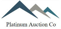 Platinum Auction Co.