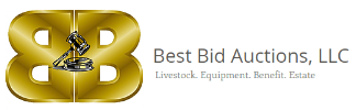 Best Bid Auctions, LLC