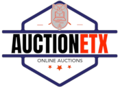 AUCTIONETX