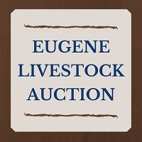 Eugene Livestock Auction